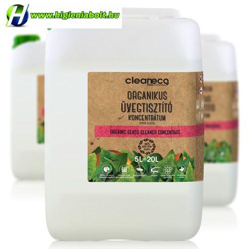 Cleaneco Ablaktisztítószer Koncentrátum 5L